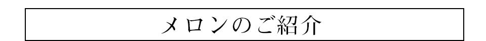 赤肉メロン紹介