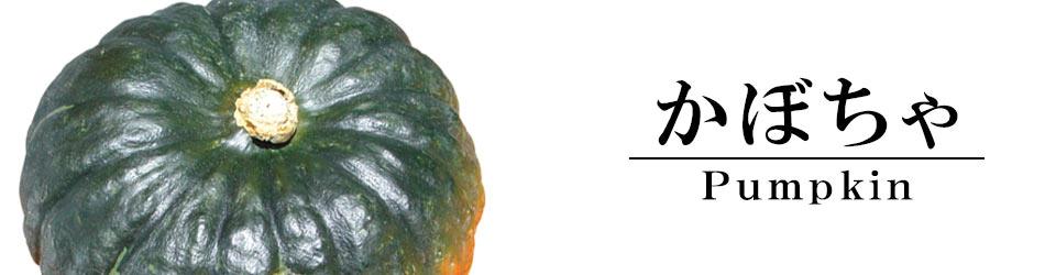 かぼちゃカテゴリ